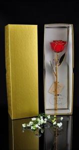 gold-trim-rose-giftbox